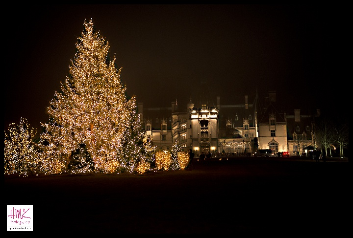 Andy Has Been Promising To Take Me To See The Christmas Lights At The  Biltmore For Almost 5 Years Now. This Year We FINALLY Got Tickets ...